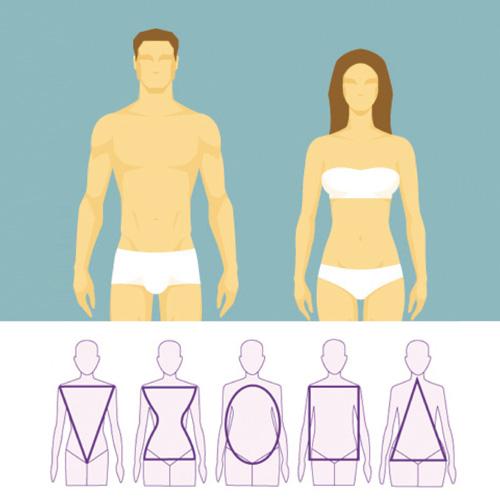Asesor de imagen tipos de cuerpo